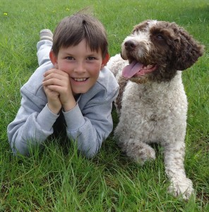 Children and dogs can learn to live in harmony
